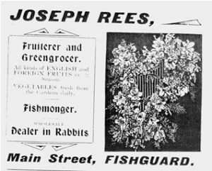 ADVERT FOR JOSEPH REES courtesy of Borough Guide to Fishguard 1910