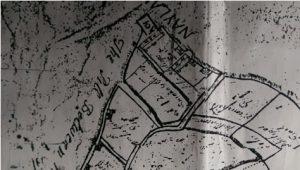 neyland-map